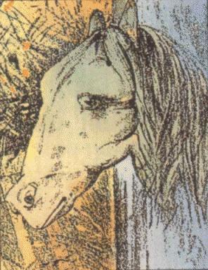 Kopf eines Pferdes oder ein Frosch?
