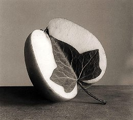 Blatt oder Apfel?
