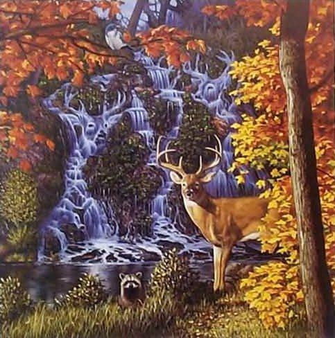 Wie viele Hirsche siehst du?