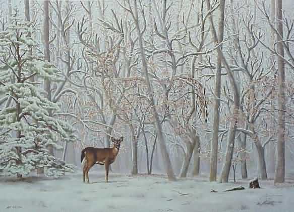Finde einen Hirsch neben einer Hirschkuh