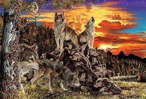 Finde 17 Wölfe
